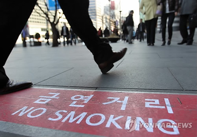 The five most popular proposals include a public pet crematorium, a ban on public smoking, benefits for households without a car, the provision of necessity kits for mothers and newborn babies, and support for mental health assessments. (Image: Yonhap)