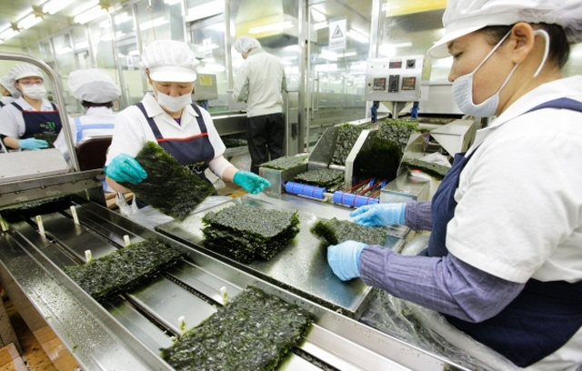 The recent plunge in Japanese dried laver production is expected to raise the price of dried laver in the country, which may serve as an advantage for South Korea. (image: Boryeong City Government)