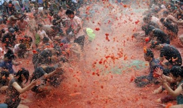 Hwacheon County to Host Tomato Festival Next Week