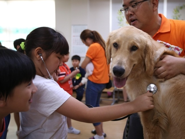 An elementary school in Gyeonggi Province held a special class on Tuesday during which students were taught the value of life by interacting with dogs under the supervision of animal experts. (Image: Yonhap)