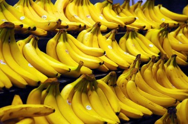 Banana Peel Effective Against Obesity: Study