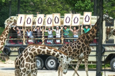 Everland's Safari Theme Park Draws 10 mln
