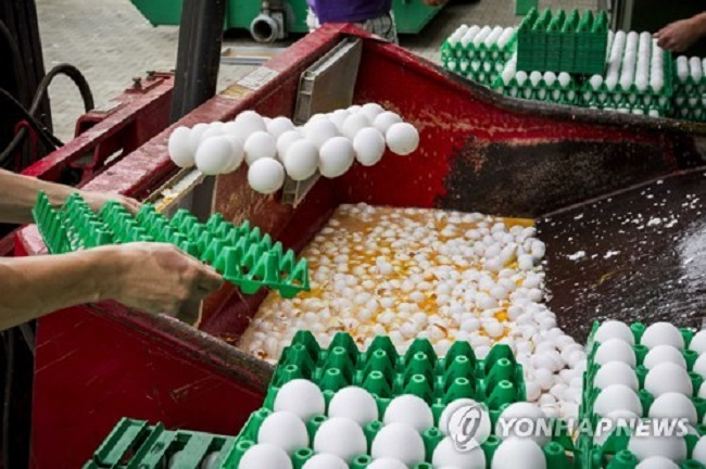 The pesticide, Fipronil, is believed to be hazardous to humans. (Image: Yonhap)