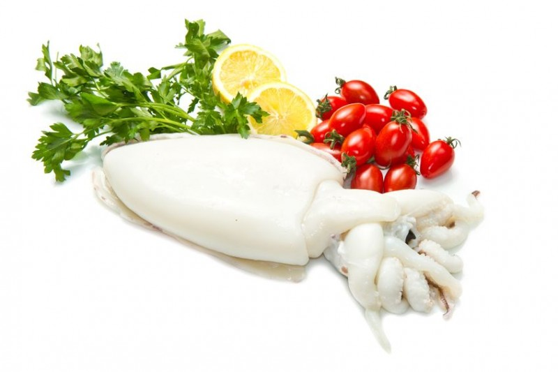 Squid Imports Soar Amid Decreased Catch Volume