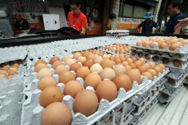 Battery Cages and Loose Environmental Regulations Behind South Korea's Latest Egg Contamination Scandal