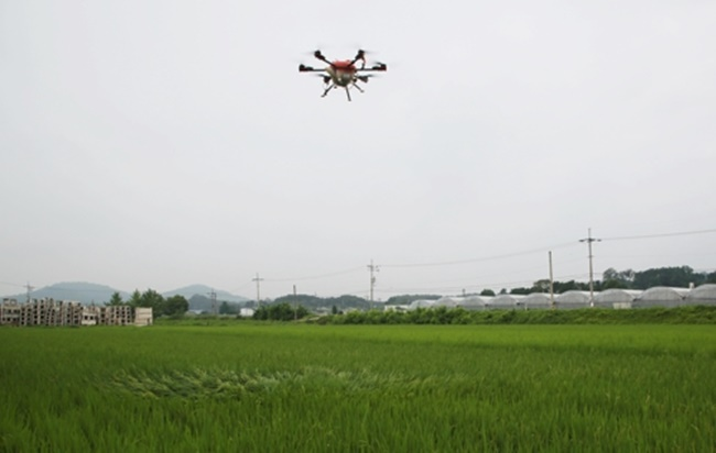 The trial event organized by the Okcheon Agricultural Extension and Technology Center was held with some 50 farmers in attendance, during which a drone zigzagged in the air and sprayed pesticides, receiving a big round of applause from the crowd. (Image: Yonhap)