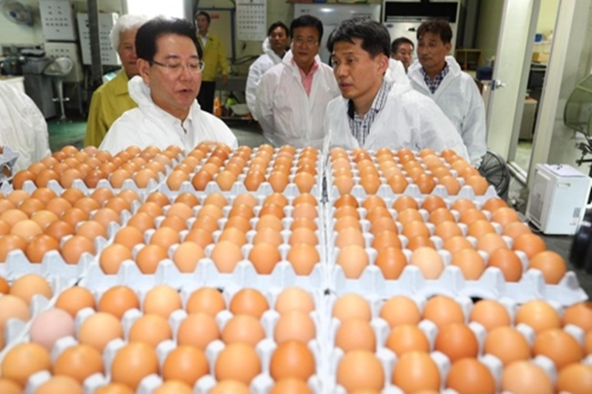 At a policy meeting held on Wednesday at the Sejong Government Complex Management Office, the Minister of Agriculture, Food and Rural Affairs revealed plans to reshape the landscape of the country's farming industry, while ramping up efforts to secure agriculture safety, measures which will see new EU-inspired livestock density regulations put in place. (Image: Yonhap)