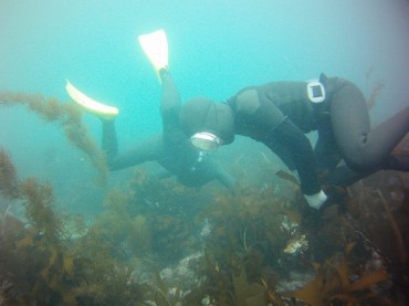 Jeju's 'Haenyeo' Female Divers to Receive Government Allowance