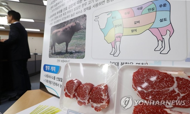 South Korean agriculture authorities are turning to genetic engineering to develop high-quality beef as part of their efforts to meet the growing interest and varying demand for different beef cuts in the country. (Image: Yonhap)