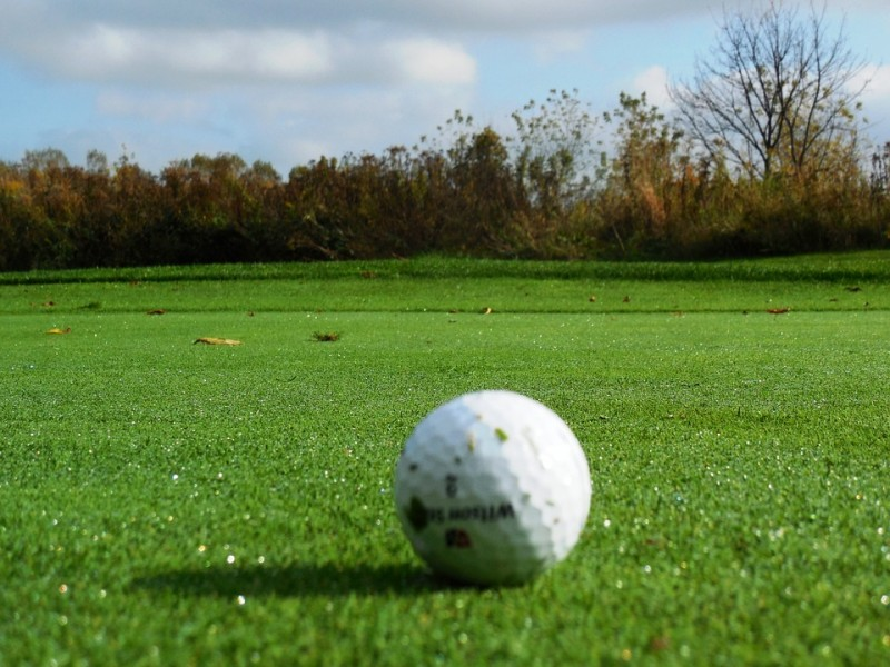 """Next """"Blue Ocean""""? Diving for Golf Balls a Lucrative but Potentially Costly Business"""