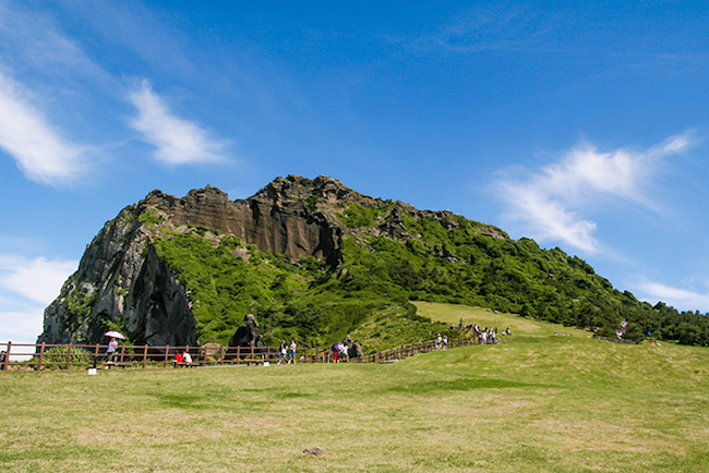 Jeju Island Operates Free Shuttles for Foreign Tourists