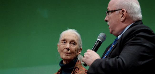 "She urged the room to ""take responsibility for the politicians we vote for"". (Image: the Jane Goodall Institute)"