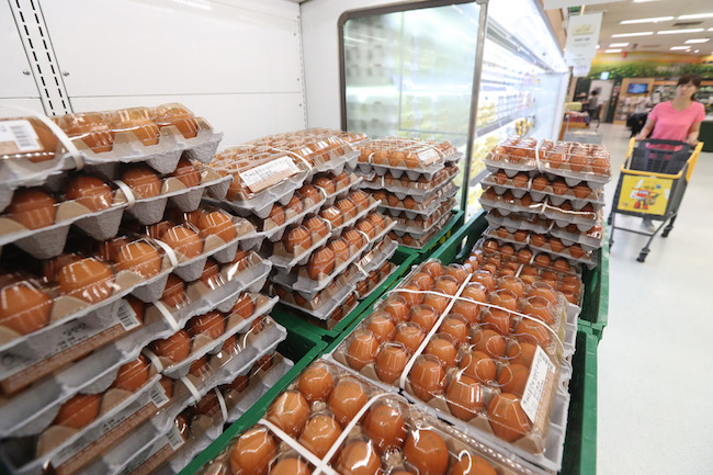 The Ministry of Agriculture, Food and Rural Affairs said Thursday it will step up inspections of the egg industry, from production to distribution, starting next month. (Image: Yonhap)