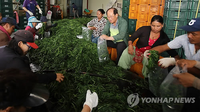 Among the six, three (Goesan, Jincheon, Eumseong) will once again open up spots for another round of seasonal work in the latter half of this year. (Image: Yonhap)