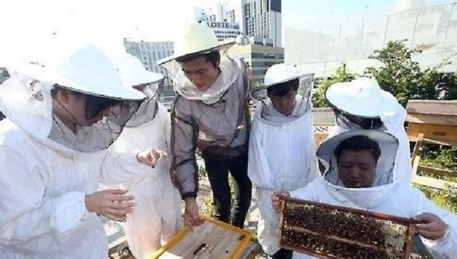 A spokesperson for the Center for Freedom of Information and Transparent Society pointed out the irony of the city's recent efforts to increase the population of honey bees when a select number of its districts were actively destroying them by using the so-called honey bee killers. (Image: Yonhap)