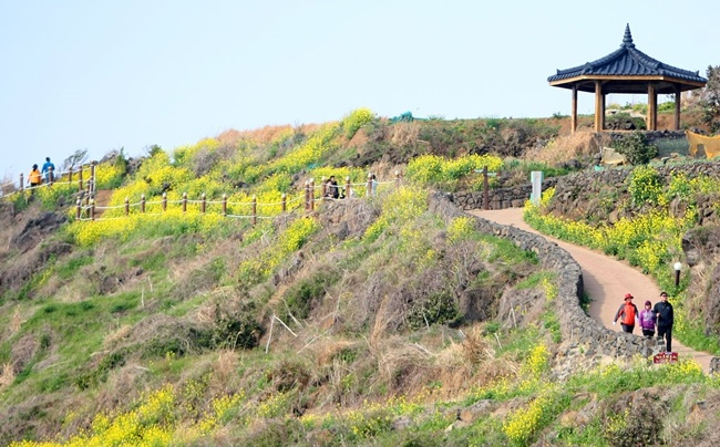 The survey conducted with a sample of over 600 people by the Jeju Development Institute in celebration of the 10th anniversary of the island's signature trail showed both local residents and tourists predominantly see the Olle Trail as a major contributing factor behind the growth of Jeju's tourism industry. (Image: Yonhap)