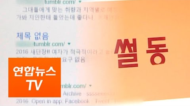 U.S. social media Tumblr has rejected the South Korean authorities' request to regulate adult content on its platform, claiming the company without a physical presence in the country is regulated by U.S. law, a lawmaker in Seoul said Monday. (Image: Yonhap)