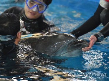 Baby Dolphin Born in Captivity Celebrates 100th Day