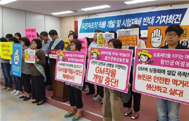 Led by the anti-GMO collective GMO Free Jeonbuk, the civic groups record of opposition to the RDA's aims began in 2015. (Image: Yonhap)