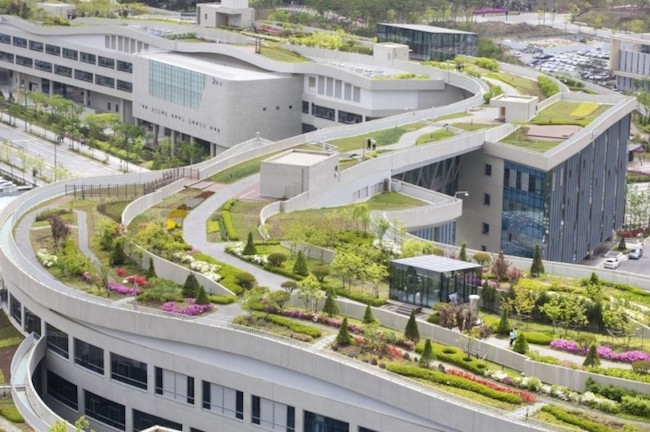 The torch will visit Sejong Special Autonomous City on November 12 and 13, where its course will include the Sejong Government Complex, home to the Guinness World Records-designated largest rooftop garden in the world. (Image: Yonhap)