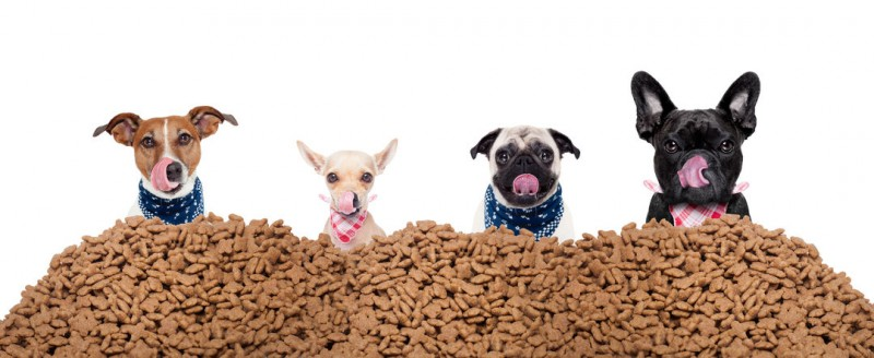 Pet Food Trade Deficit Widens