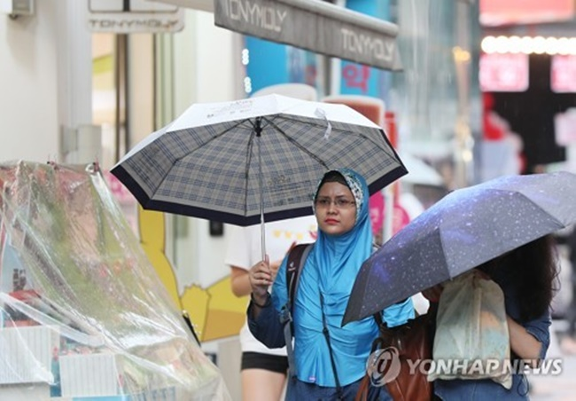 Despite the efforts of South Korean tourism authorities to attract Southeast Asians to fill a void left by Chinese tourists, the number of visitors from the Southeast Asian region dropped between March and August this year, new data has revealed. (Image: Yonhap)