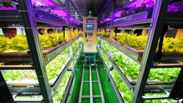 Incheon's Nam District Launches Urban Farming Project