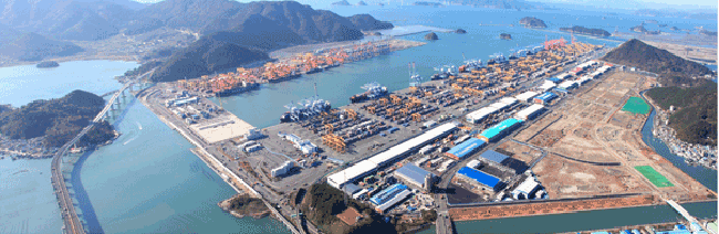 Emergency quarantine protocols were put in place at the Port of Busan after foreign red fire ants were discovered at a nearby open-air yard for shipping containers late last month. (Image: Busan Regional Office of Oceans and Fisheries Website)