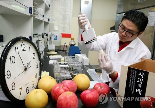 South Korea imported more than 3,000 tons of foods containing more than the permissible level of residual chemicals over the past five years, government data showed Tuesday, amid concerns over a lack of adequate measures to prevent the inflow of the harmful products. (Image: Yonhap)