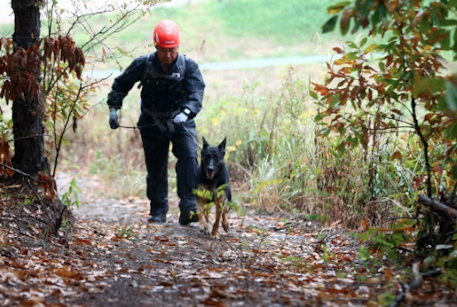 A total of 29 search and rescue dogs are to undergo training at the new facility. (Image: Yonhap)