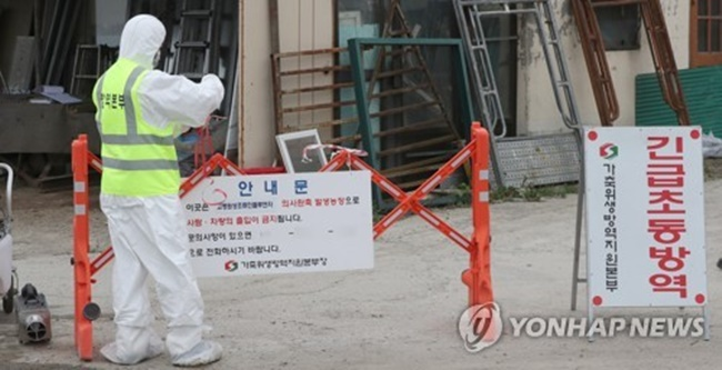 S. Korea Kills 201,000 Birds to Stem Spread of Bird Flu