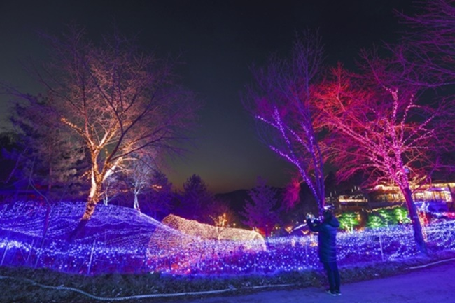 A theme park of wild edible greens in Yangpyeong (Image: Yonhap)