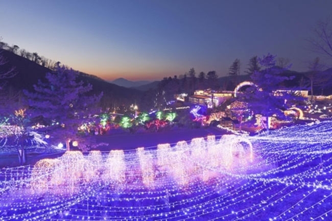 A theme park of wild edible greens in Yangpyeong is adorned with LED lamps during winter. (Image: Yonhap)