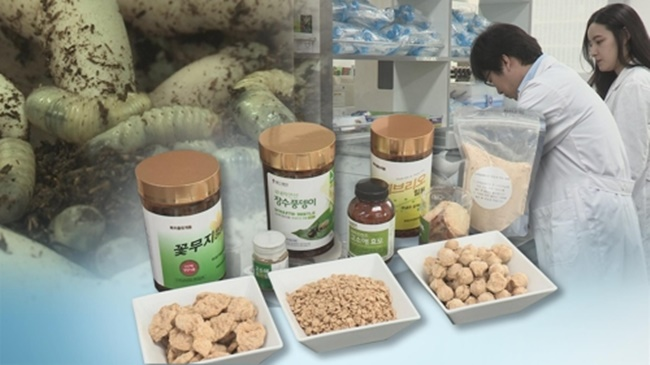 According to a survey conducted by the Korea Consumer Agency with a sample of 500 respondents, 46 people have experienced allergy symptoms after eating insects for food, accounting for 9.2 percent of the total. (Image: Yonhap)