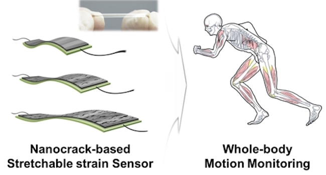 An inter-university research team has successfully incorporated motion sensors with morse code to open up the possibility of two-way communication with victims of full-body paralysis. (Image: Postech)