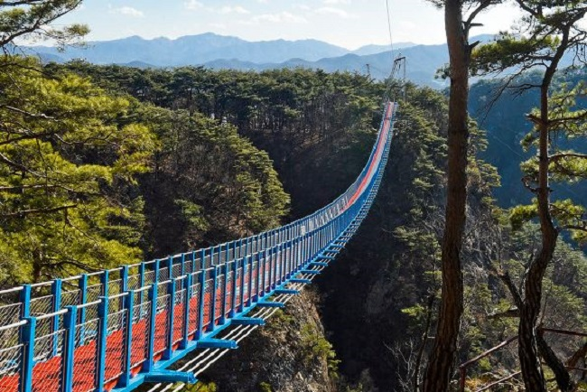 A 200m long, 1.5m wide walking suspension bridge, the largest in the country, has been completed and is open for daredevils starting January 11. (Image: Wonju)