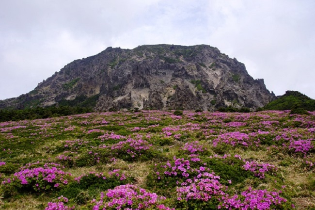 One direct beneficiary will be Jeju's Hallasan National Park, which will be expanded and designated as Jeju National Park in a bid to protect certain areas that are at risk of encroaching economic activity. (Image: Yonhap)