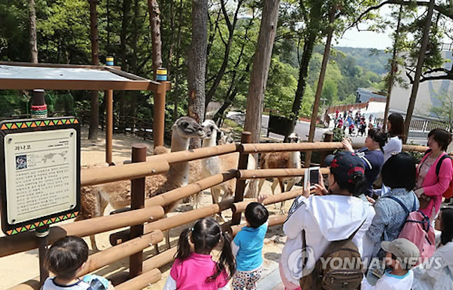 After Getting to Know One Another, the elementary school upperclassmen are asked to ponder the issue of animal welfare after being exposed to the living conditions of zoo animals and their counterparts in the wild. (Image: Yonhap)
