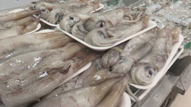 Inbound shipments of squid jumped 33.5 percent in 2017 as the domestic catch shrank due to overfishing by Chinese trawlers in the East Sea. (Image: Yonhap)
