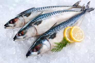 Mackerel Most Popular Fish in South Korea