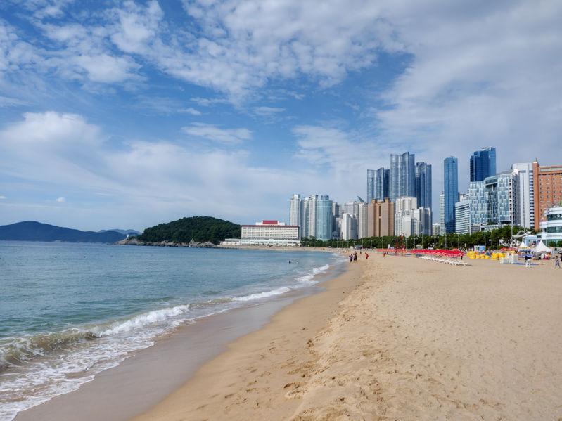 A new survey has found that mackerel is the favorite fish of South Koreans, while Haeundae Beach is the go-to beach for many. (Image: Kobiz Media)