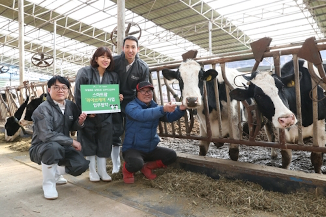 "SK Telecom, South Korea's leading telecom operator, has teamed up with Namyang Dairy Products and IoT firm uLikeKorea to launch a dairy cattle management system using biocapsules that has been dubbed ""Live Care"". (Image: Yonhap)"