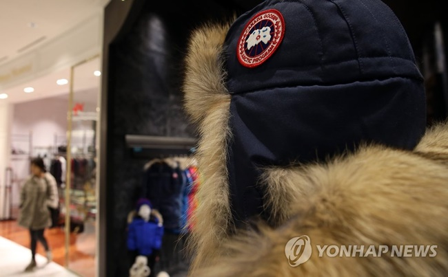 In a previous press release, PETA said geese face cruel treatment during the making of Canada Goose jackets, as they are crammed into cages and hung upside down with their heads cut off, urging people to refrain from wearing the jackets. (Image: Yonhap)