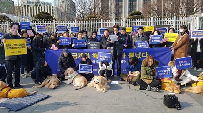In a statement issued on Thursday, the Korean Animal Welfare Association branded the legislation forcing muzzles on dogs taller than 40 centimeters 'unconstitutional', after consulting scores of lawyers. (Image: Yonhap)
