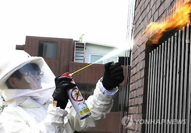 Firefighter working to get rid of a bee hive (Image: Yonhap)