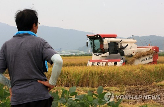 In Kim's home province, 27.3 percent of his fellow growers have planted different crops this year, a low percentage that is nonetheless far ahead of Gyeonggi Province's 6.5 percent of farmers who have done likewise. (Image: Yonhap)