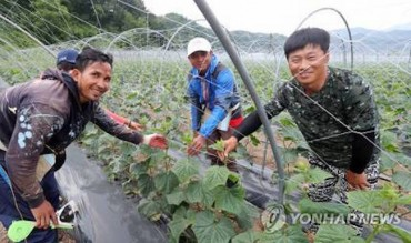Foreign Workers an Increasingly Indispensable Part of South Korea's Agricultural Landscape