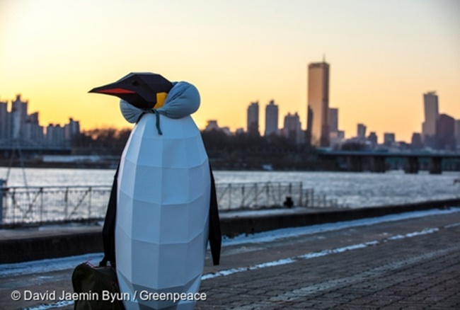Model Penguins Appear Around Seoul to Raise Awareness of Climate Change