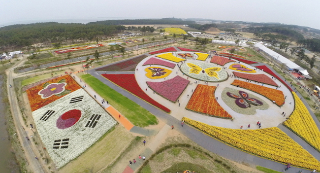 2017 World Top 5 Tulip Festival Opens Next Month in Taean