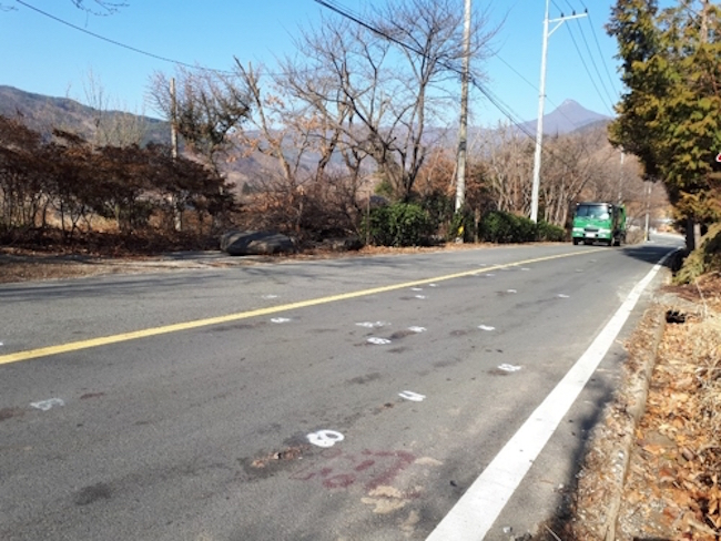 Roadkill spots (Image: Green Korea)